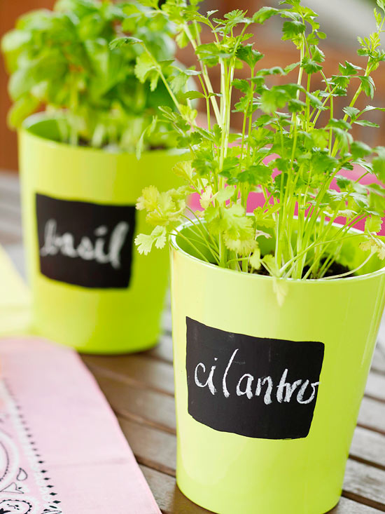 Herb pots labeled with chalkboard paint and chalk
