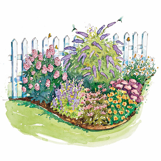 Bird and Butterfly Garden Plan