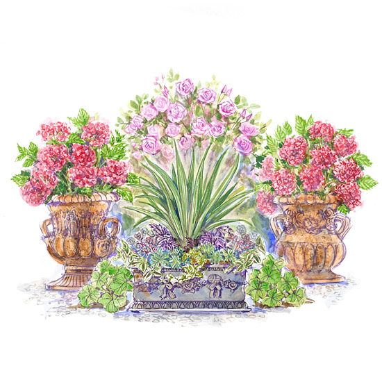 Classic Container Garden Plan Illustration