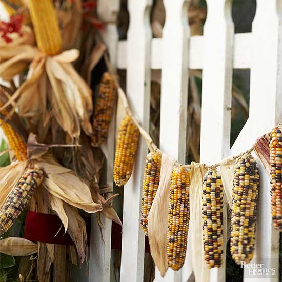 Indian Corn Garland