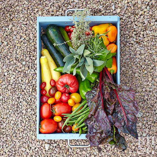 fresh summer vegetables in crate
