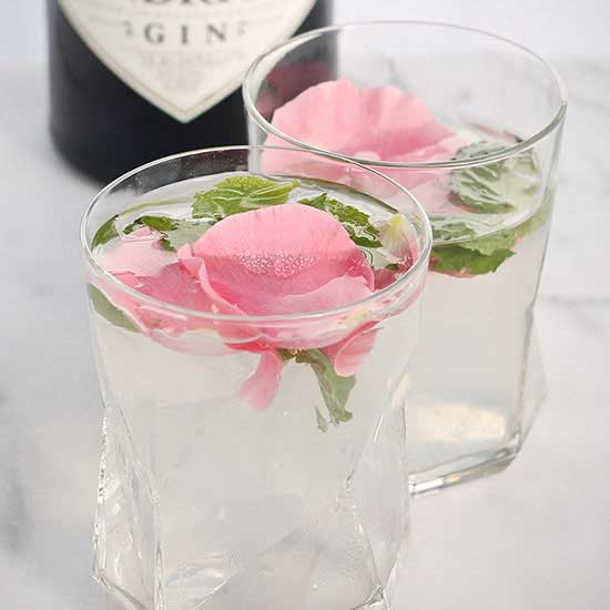 Rose Mint Cucumber Cooler