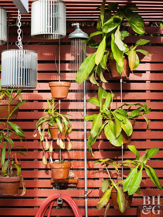 red wooden outdoor shower with plants hanging