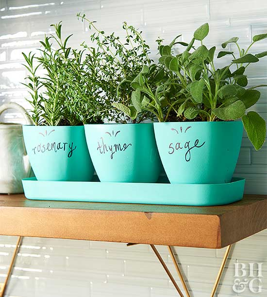Itty Bitty Kitchen Storage herb containers