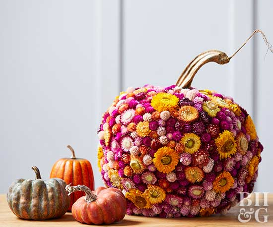 pumpkins with flowers, flowers, pumpkins
