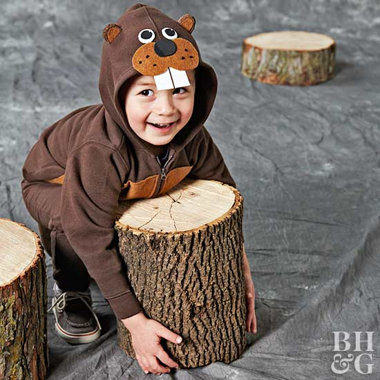beaver costume, Halloween, costume