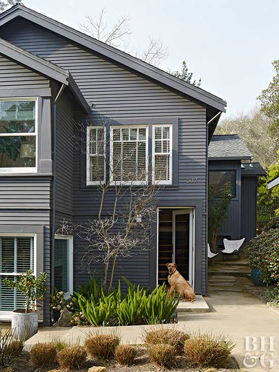 slate color home exterior, dog, home exterior, landscaping