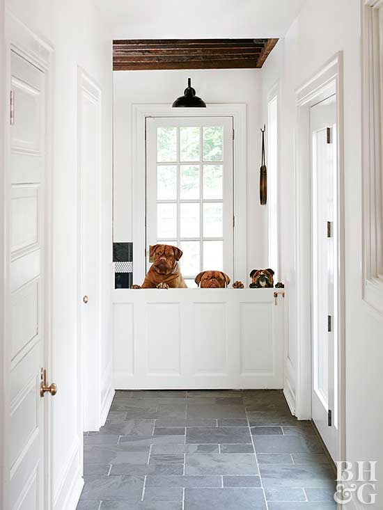 white hallway with dogs