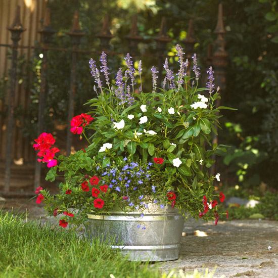red white and blue flowers in a galvanized tub