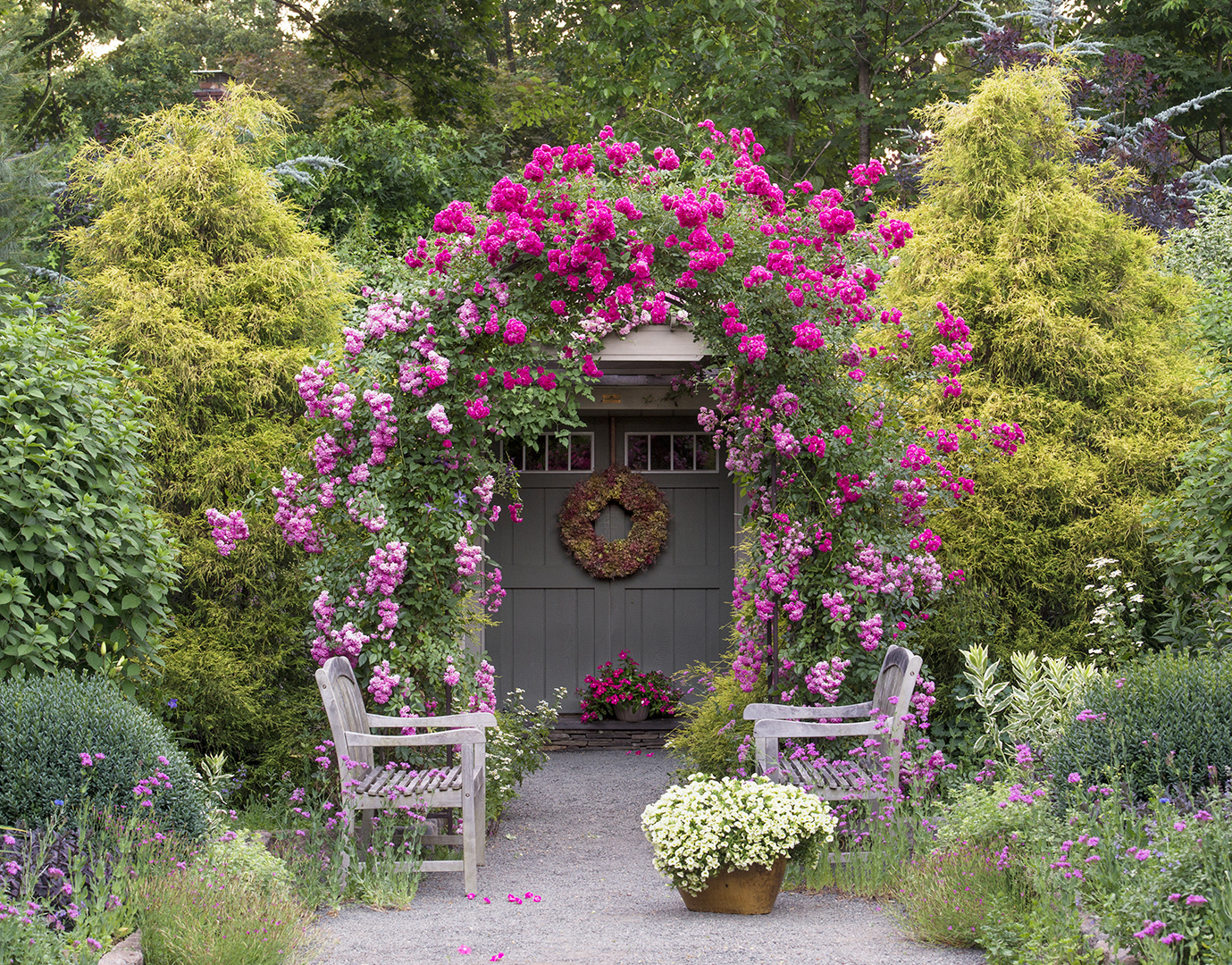 rose arbor framing path to toolshed