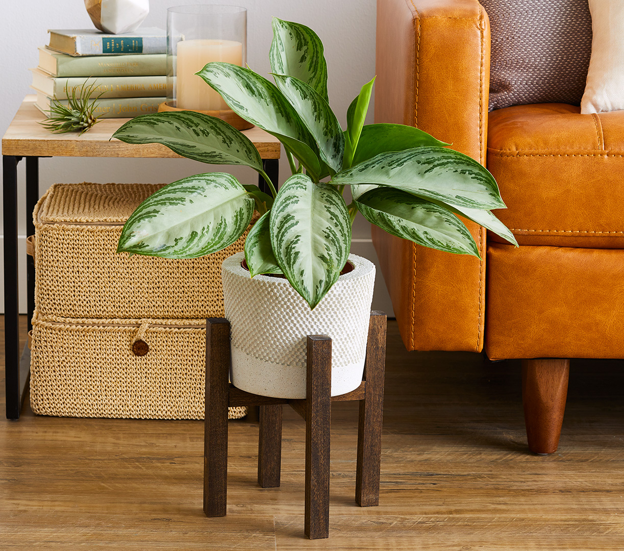wood plant stand in home