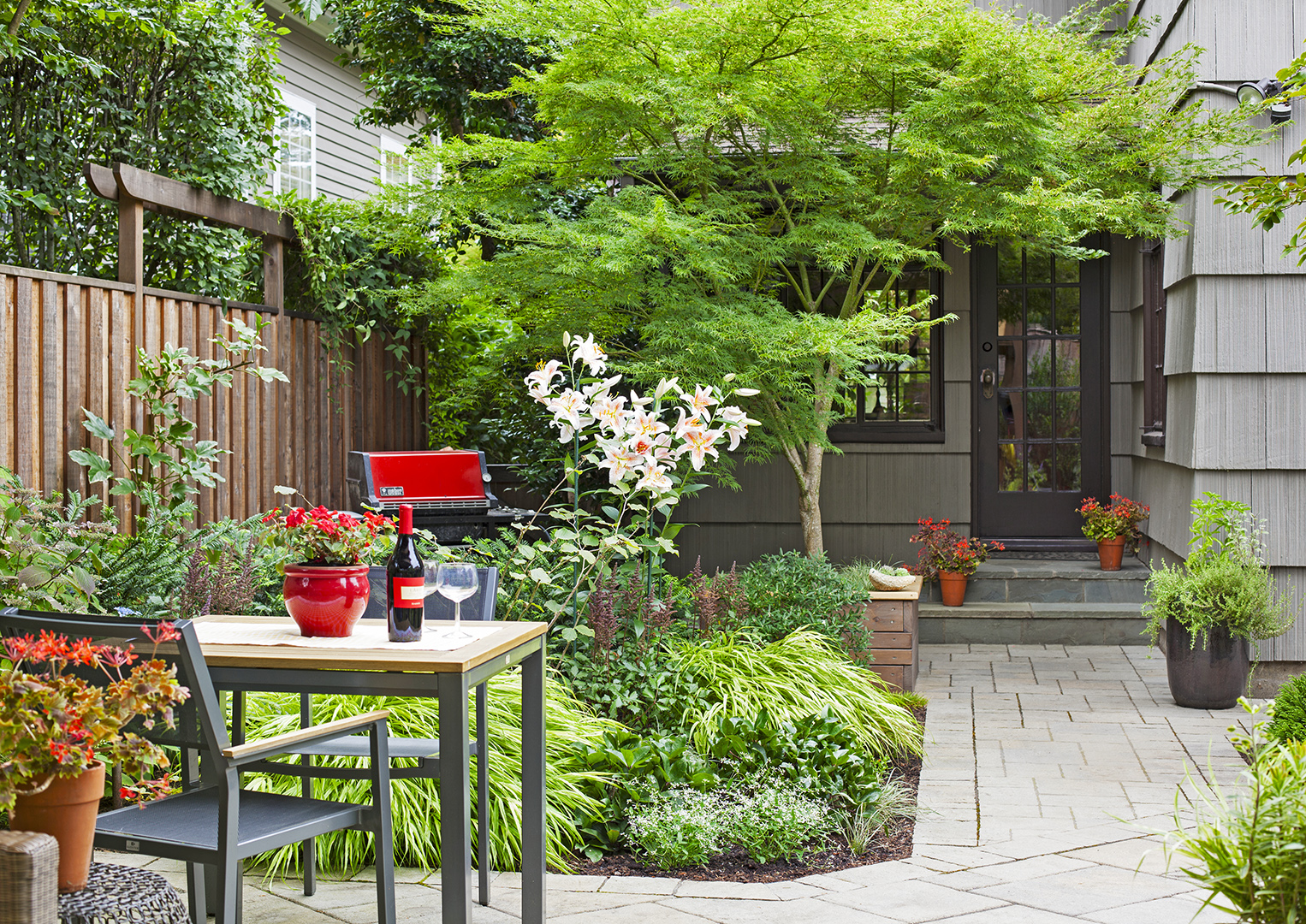 patio with plantings and japanese maple