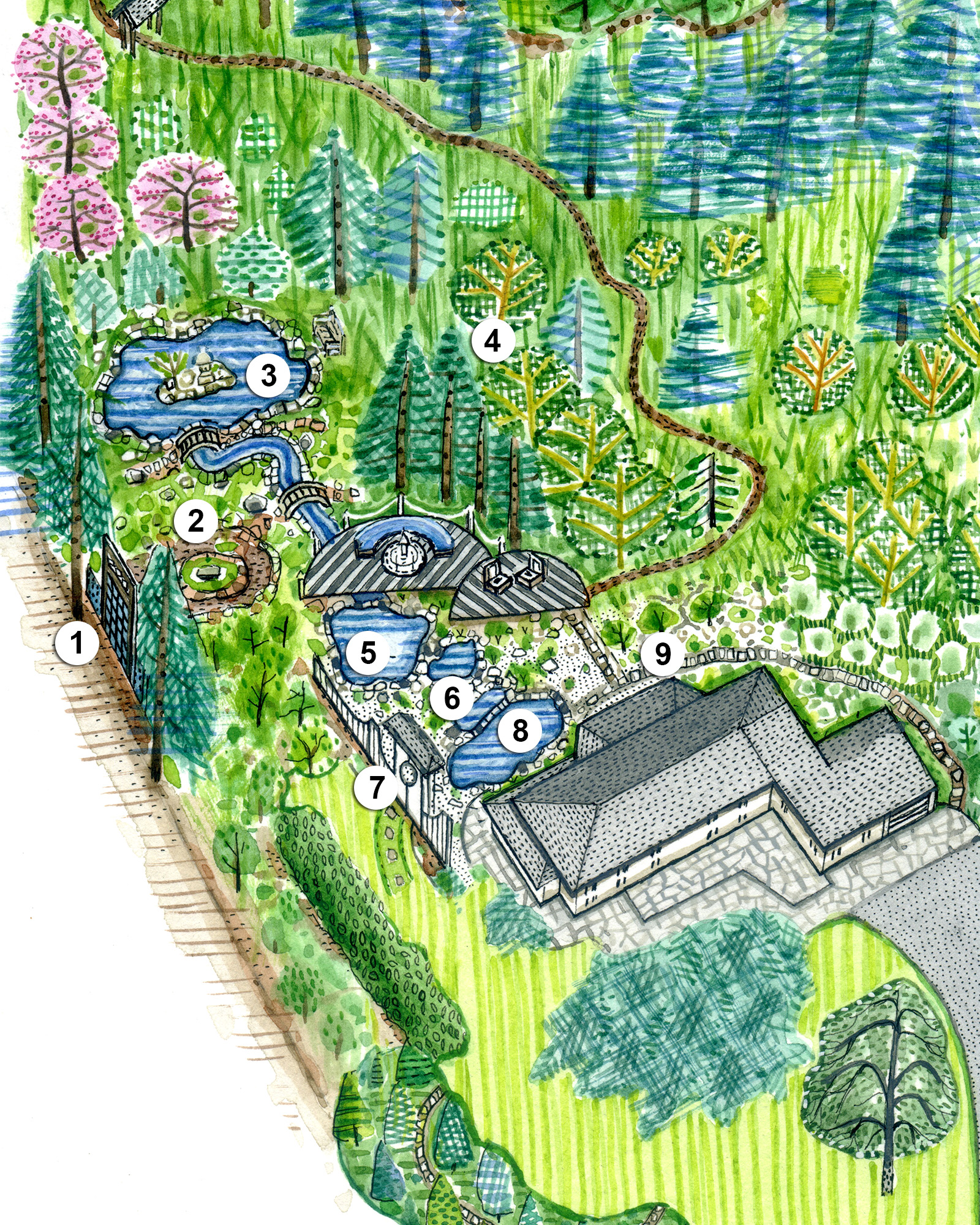 asian-style serenity garden illustration plan numbers