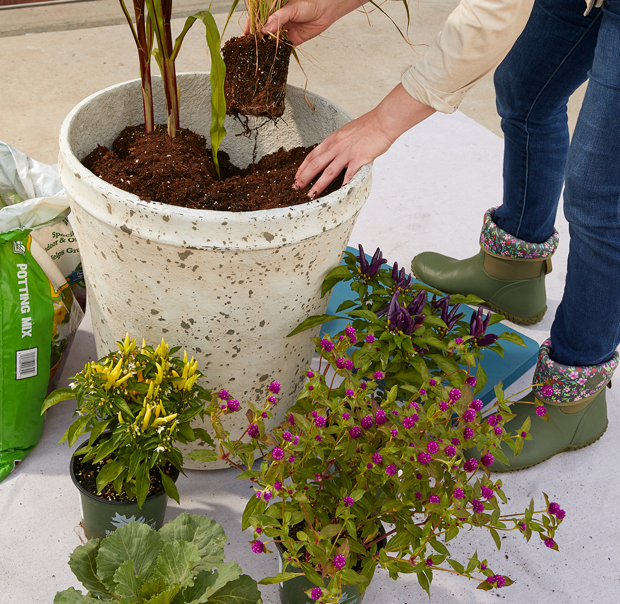 woman placing potted plants in container