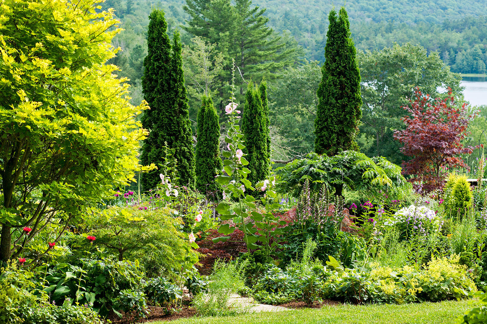 lush garden with arborvitae and maple trees