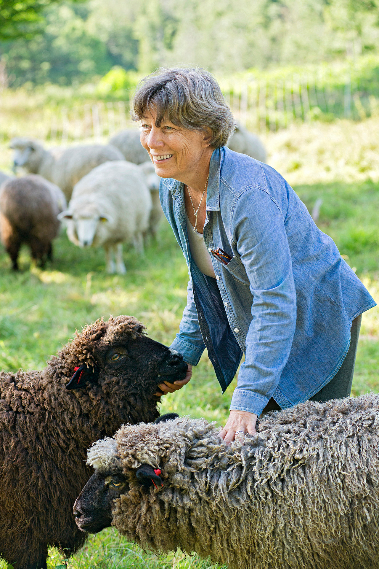 woman standing next to sheep in pasture