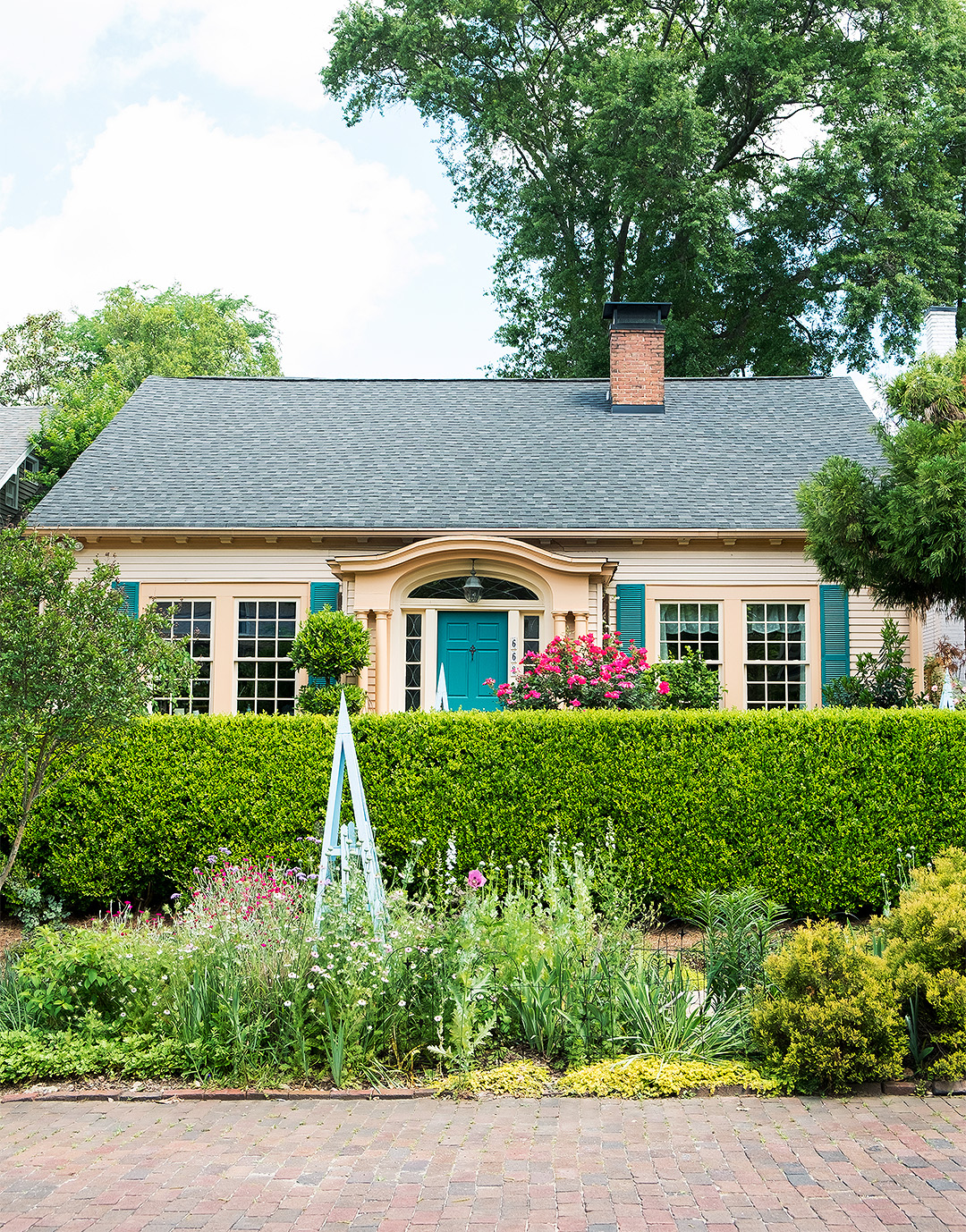 colorful urban garden house front hedges flowers