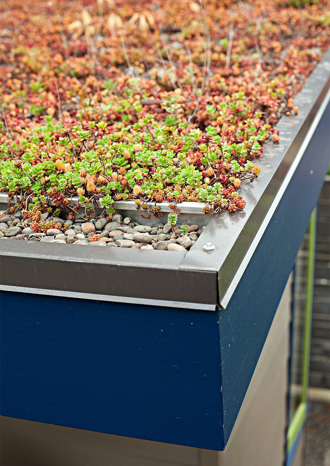 sustainable garden design shed living roof