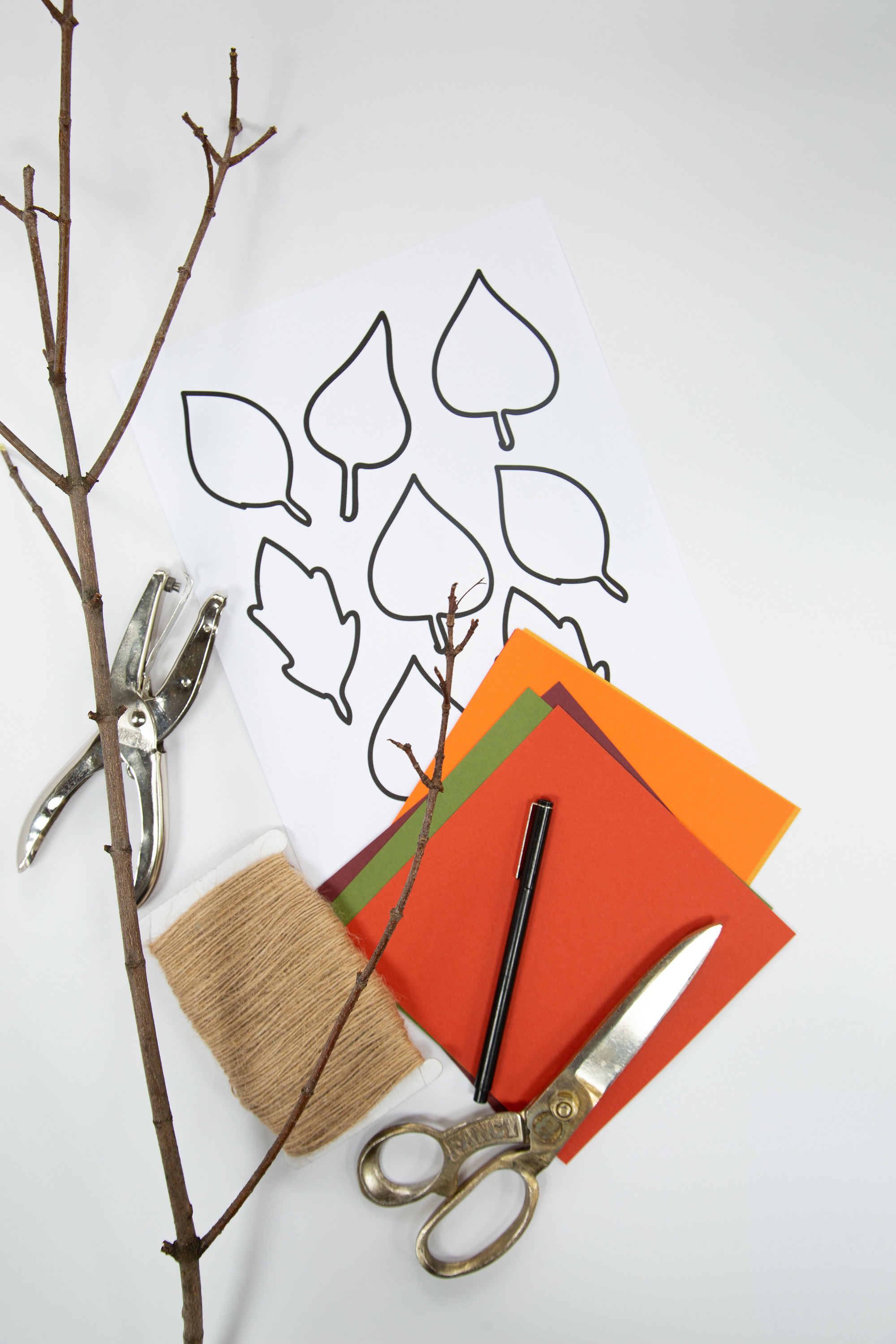 paper scissors supplies for thanksgiving gratitude tree project
