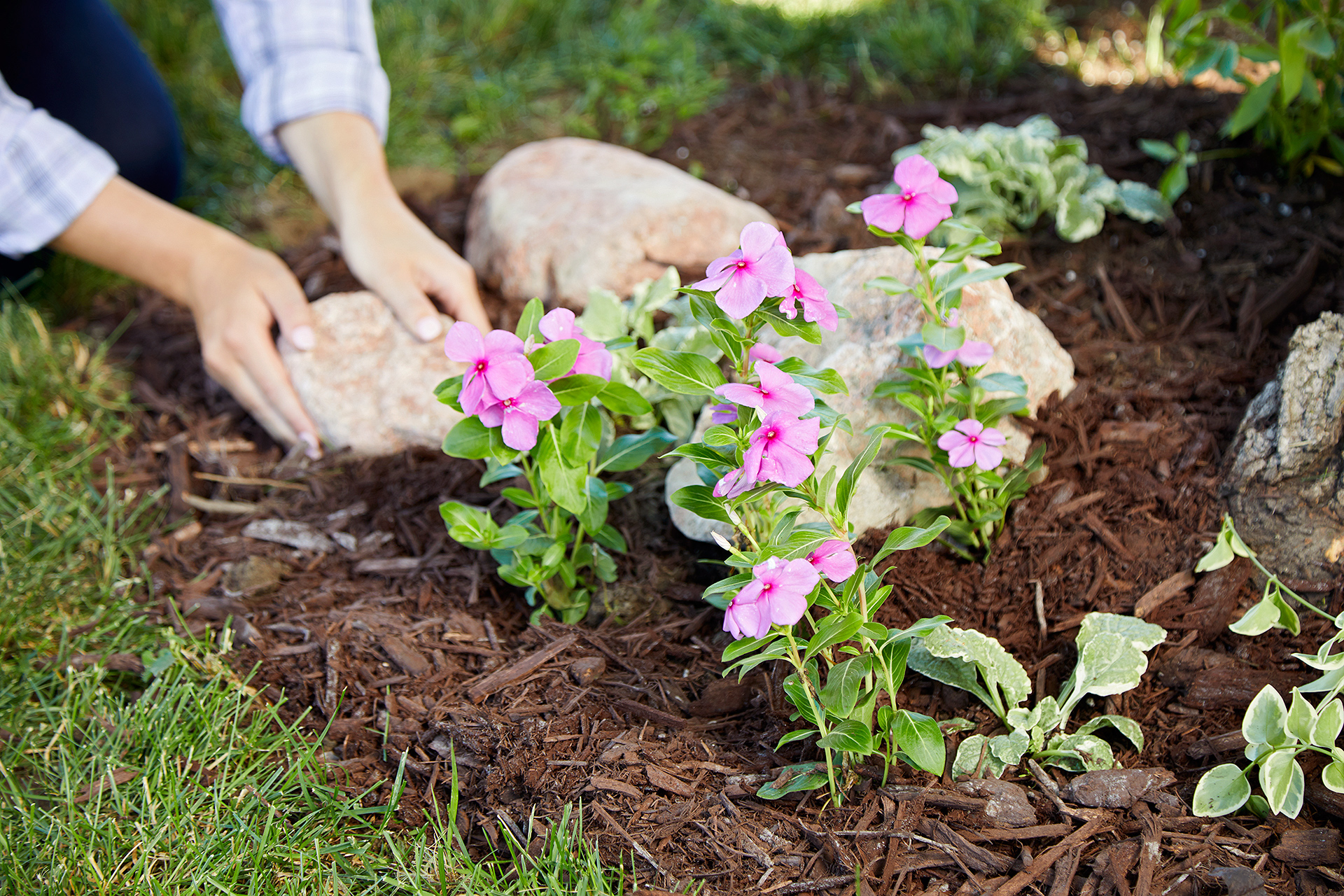 How To Build A New Flower Bed Better