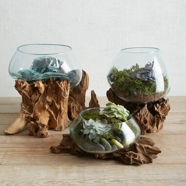 Terrarium Containers Better Homes Gardens
