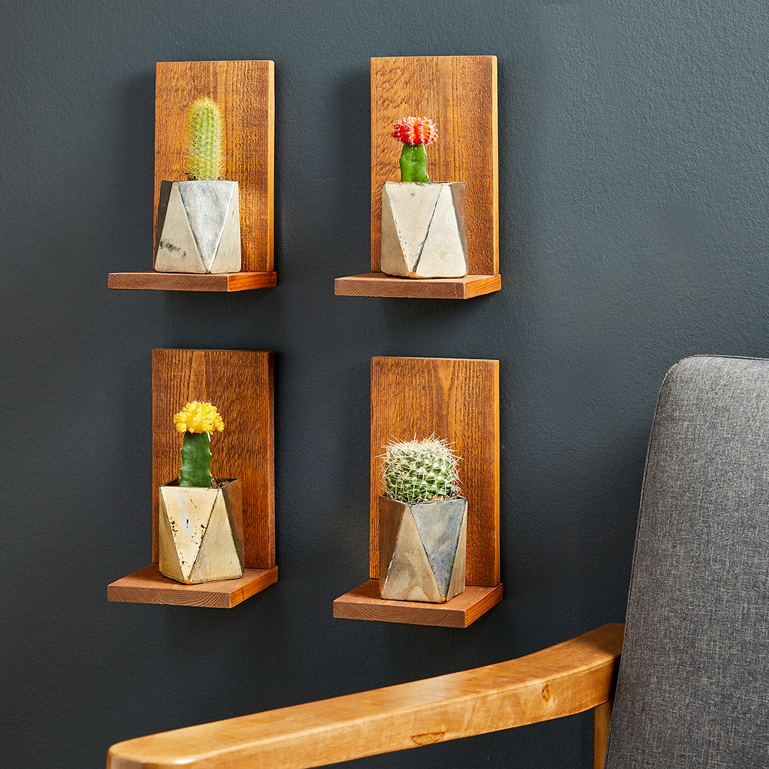 l-shaped wooden shelves with cacti in vases