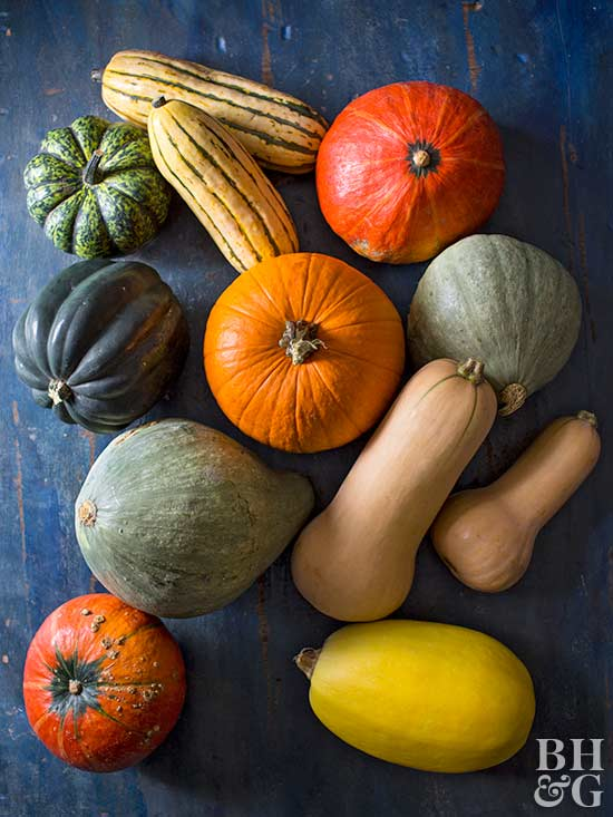 various winter squash on blue