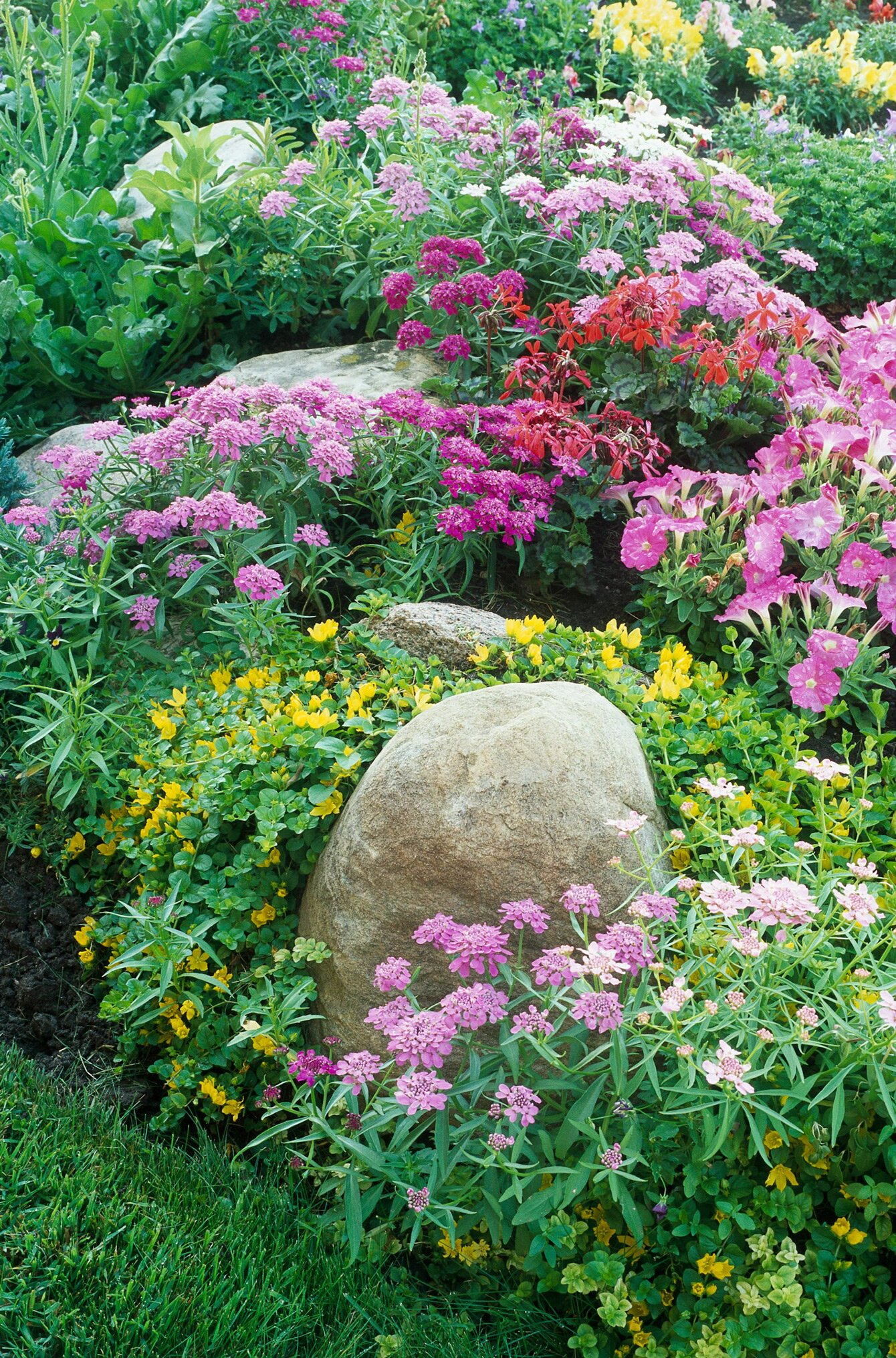 8 Steps to a No-Work Cottage Garden  Better Homes & Gardens