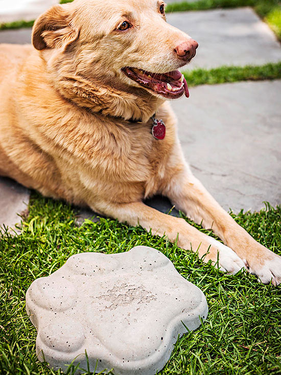 Paw Print Stepping-Stone
