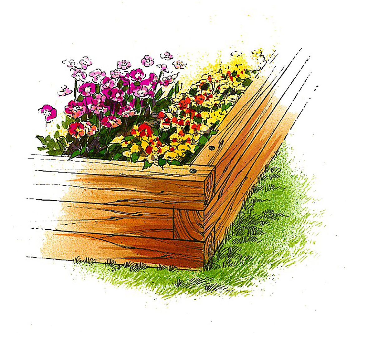 illustration wood raised flower bed