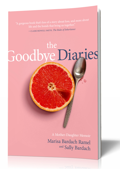 The Goodbye Diaries book cover