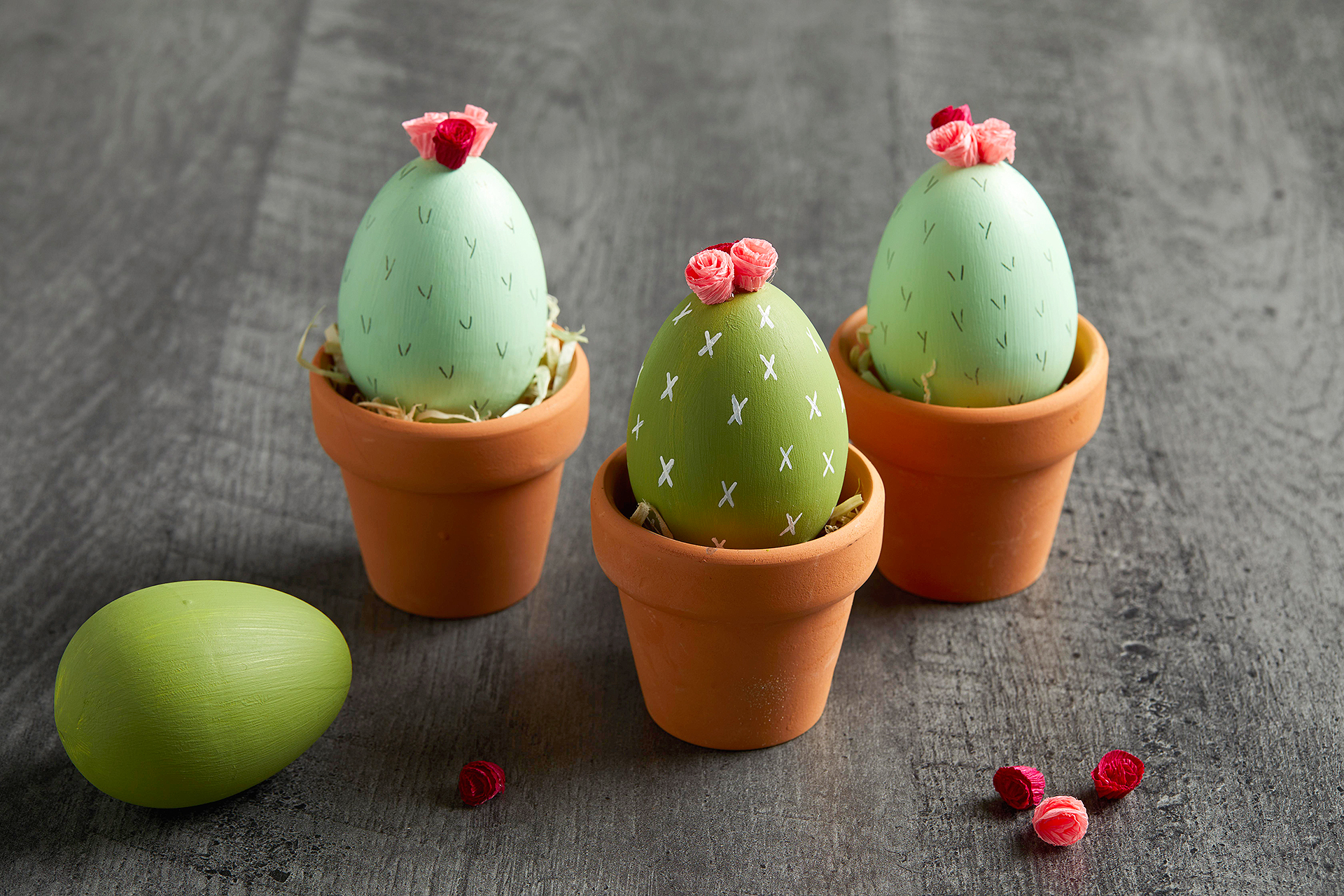 painted cactus eggs in miniature terra cotta pots