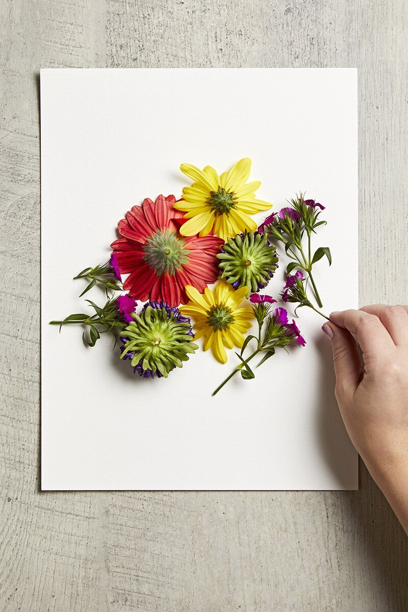 placing flowers on paper for smashing