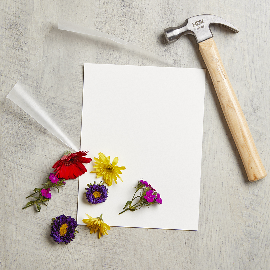 supplies to create smashed flower art