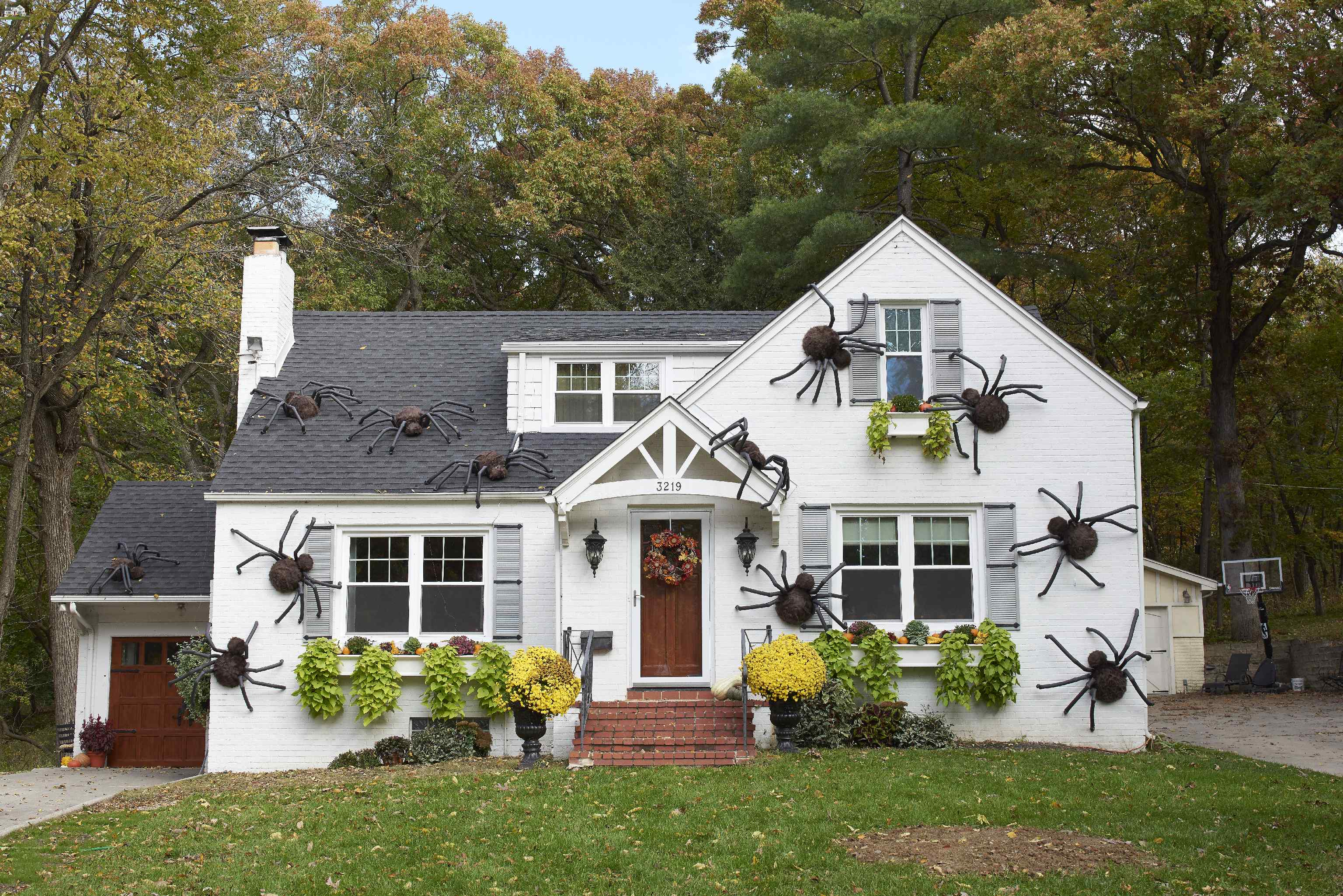 make giant spiders climbing over white house