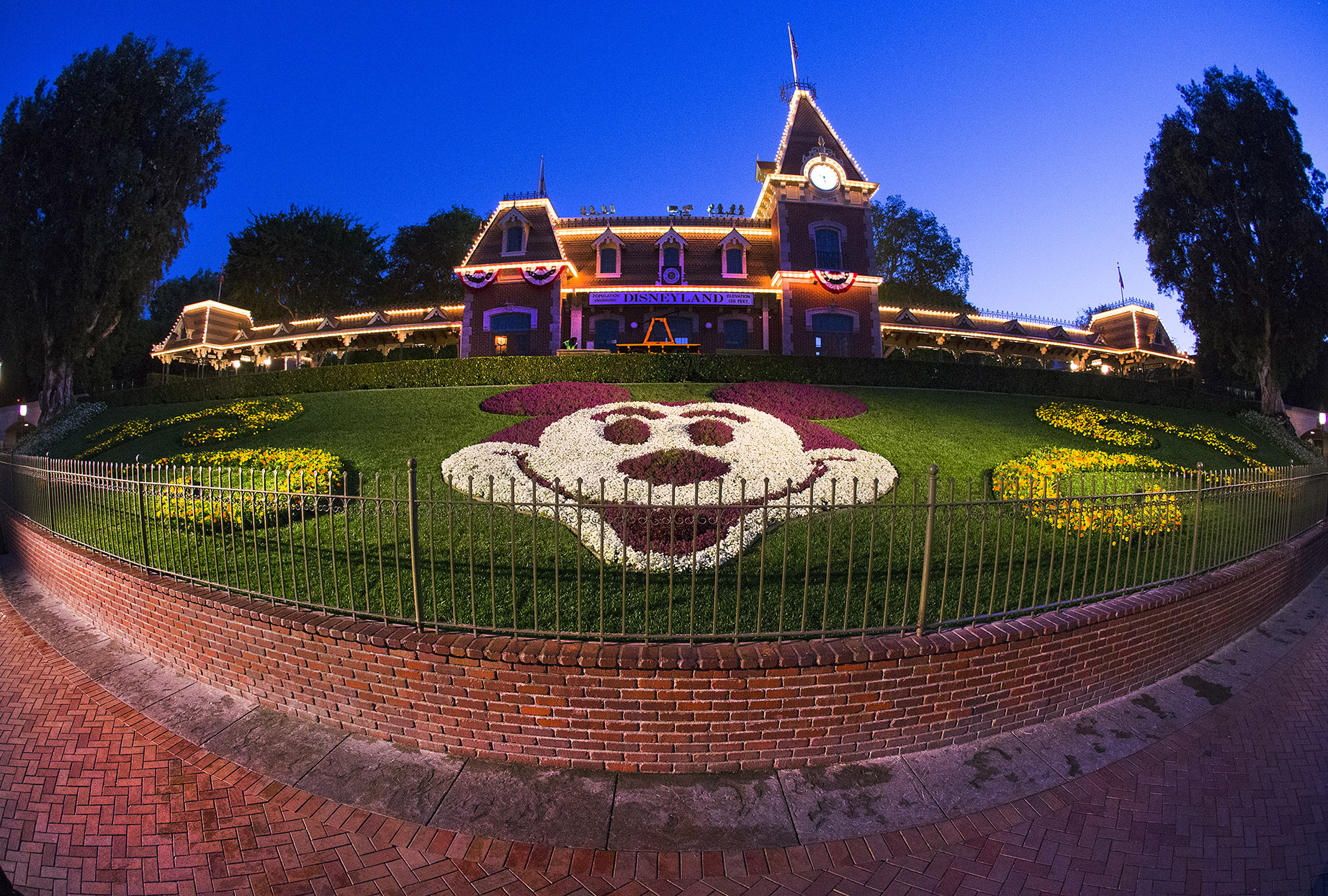 Mickey Mouse face made out of white and dark purple flowers in a flower bed at Disneyland