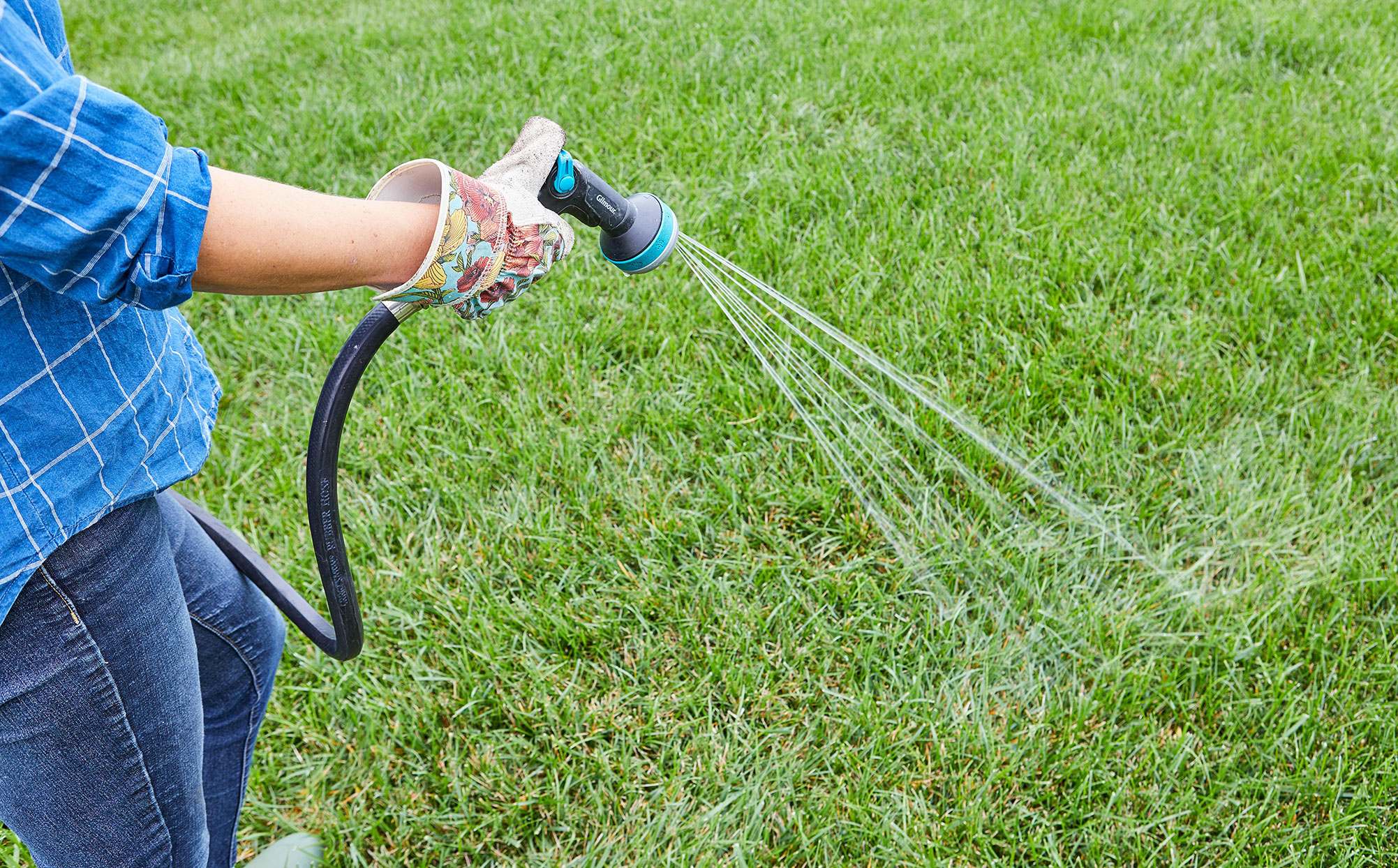 woman watering green grass