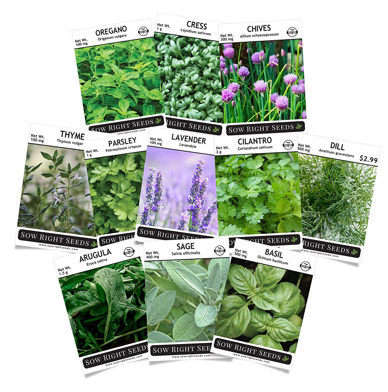 Eleven seed packets of herbs with photos of the herbs on the front of each packet