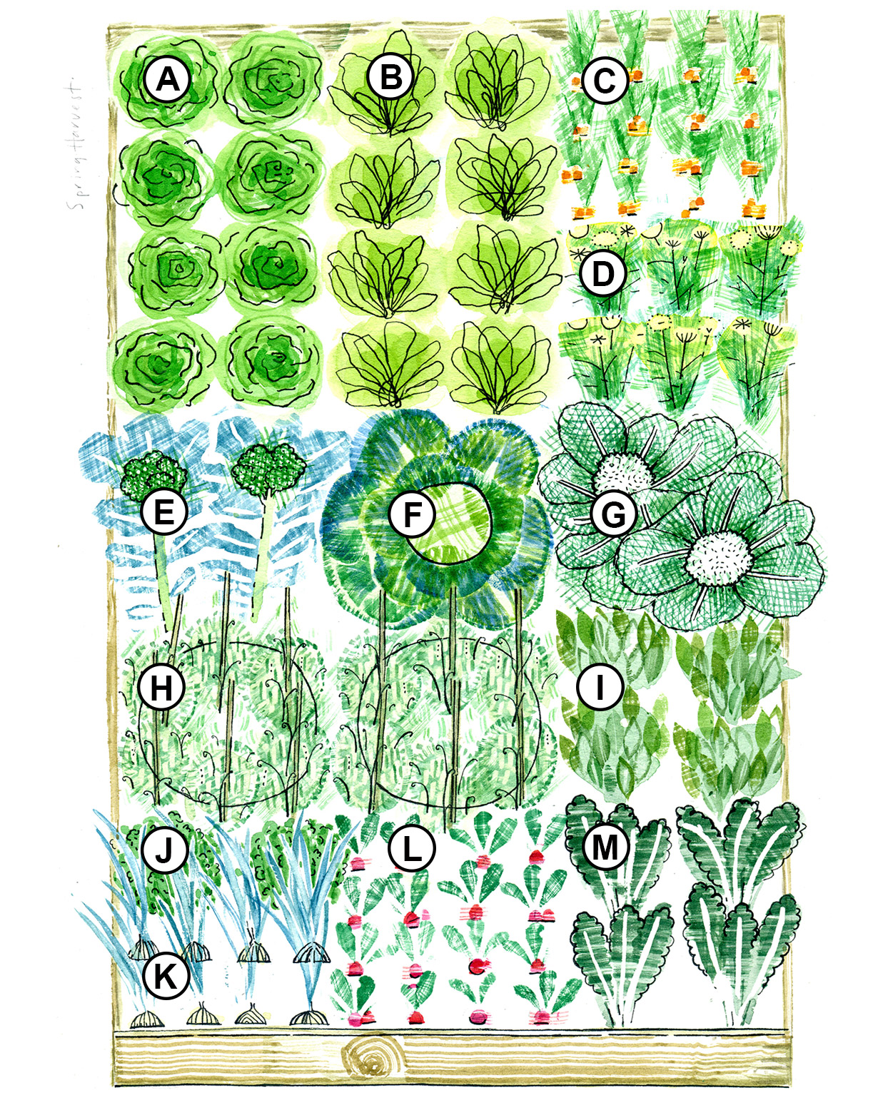 spring raised-bed garden plan