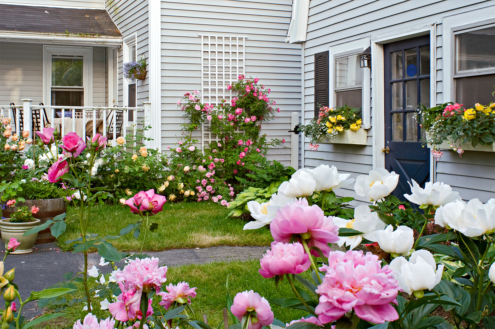 home with pink and white peonies