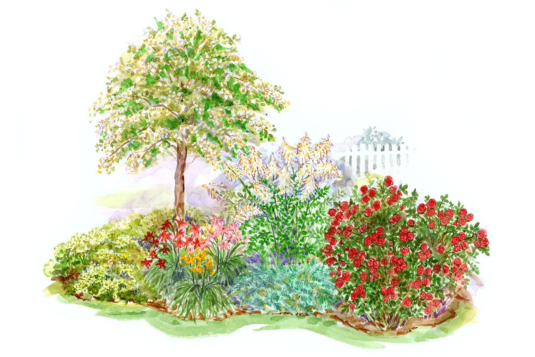 clay soil garden plan illustration