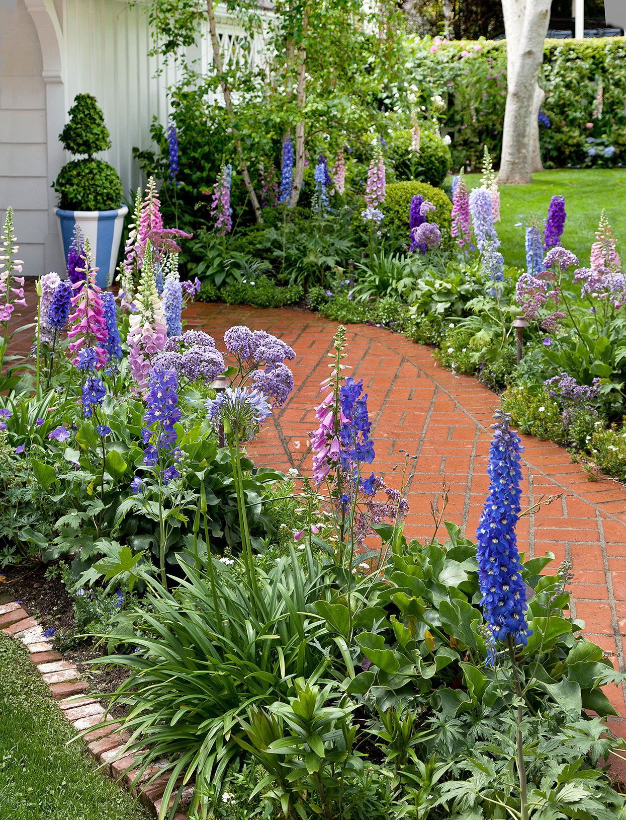 delphinium foxglove and lavender border