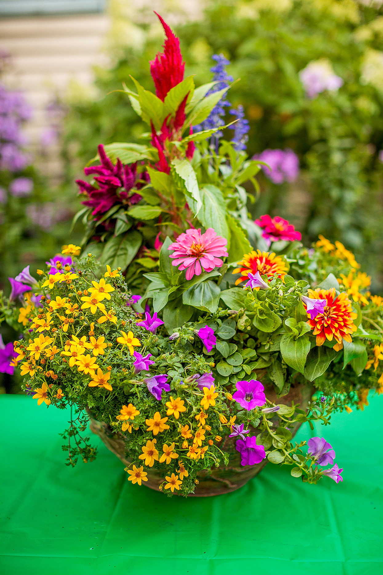 marigolds and zinnias in container