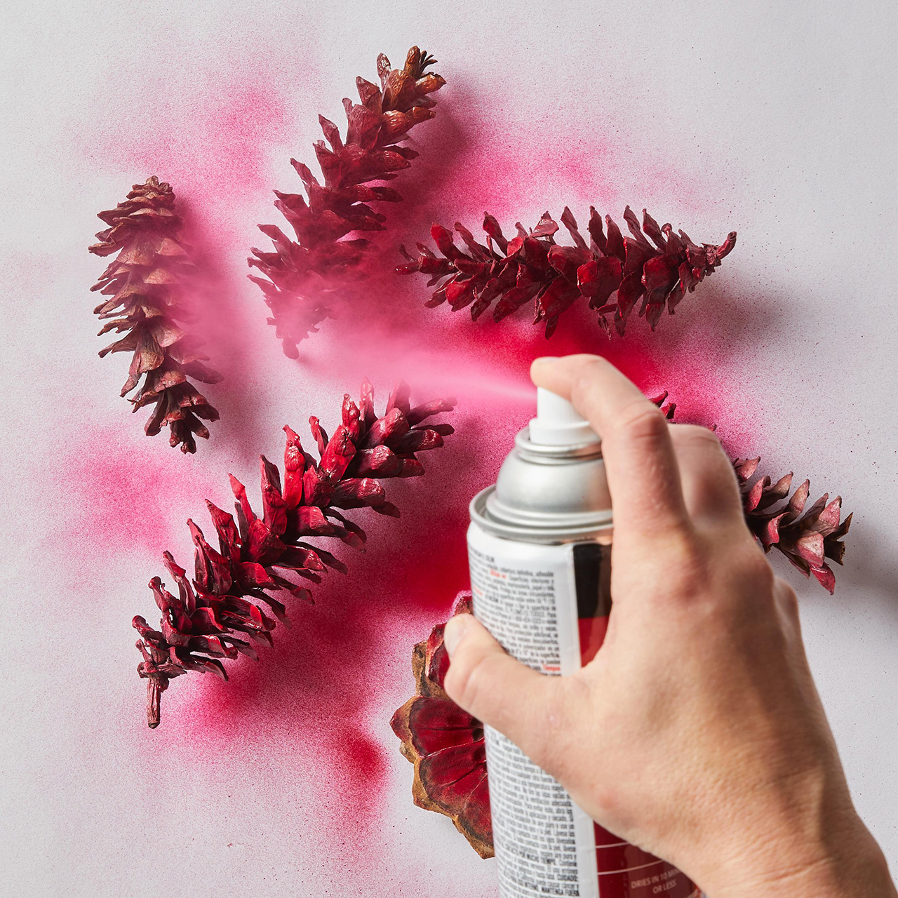 pine cones being sprayed with pink paint