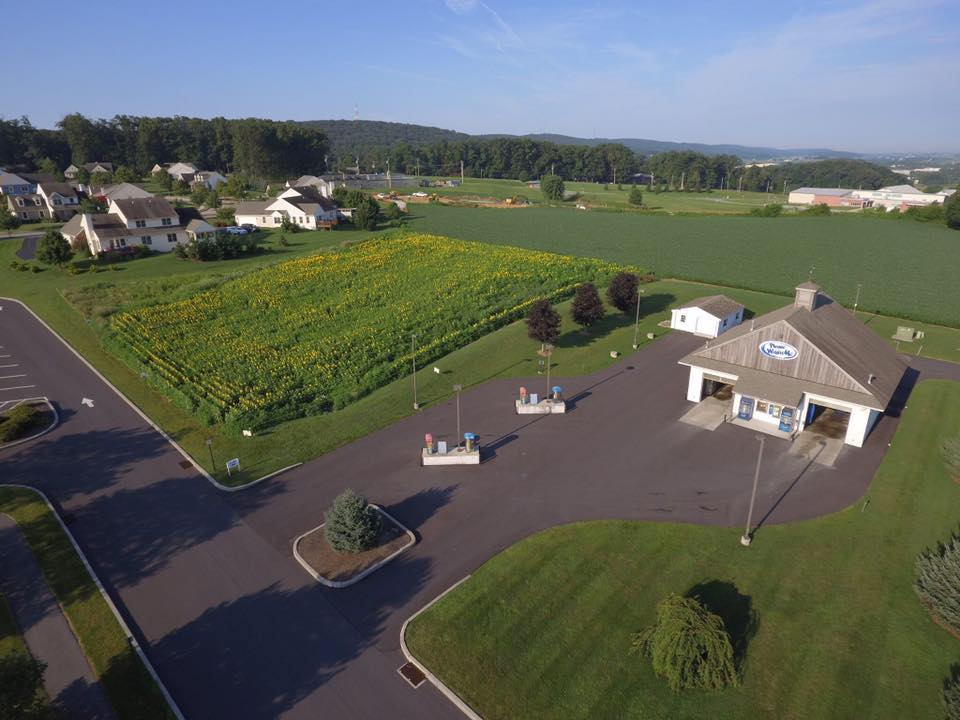Aerial shot of Please Wash Me car wash with sunflower field next to it