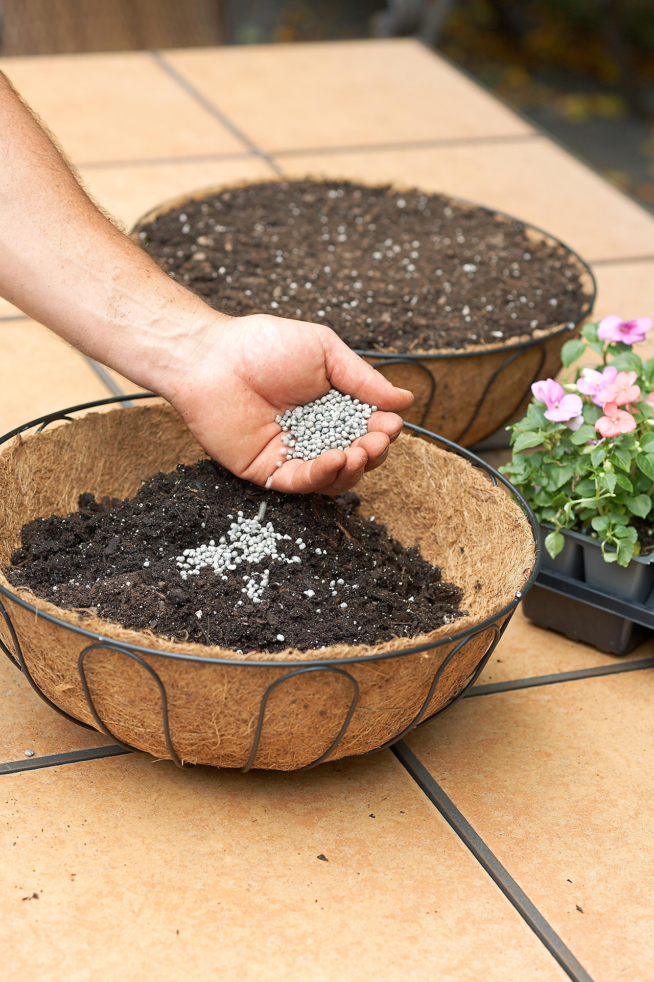 planting seeding into hanging basket sphere