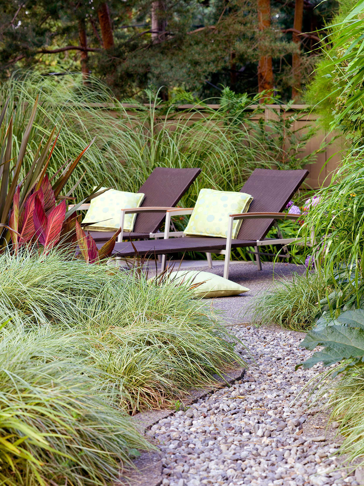 ornamental grasses growing by rock path and lounging chairs