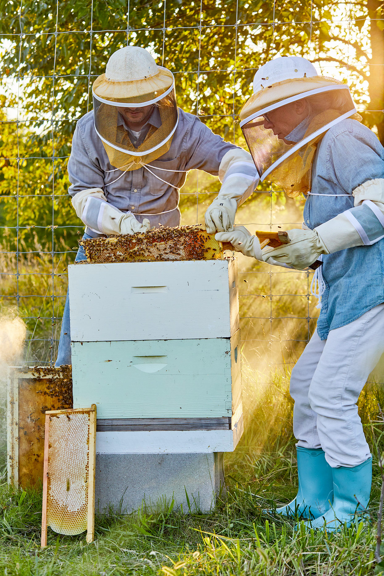 two beekeepers tending bees