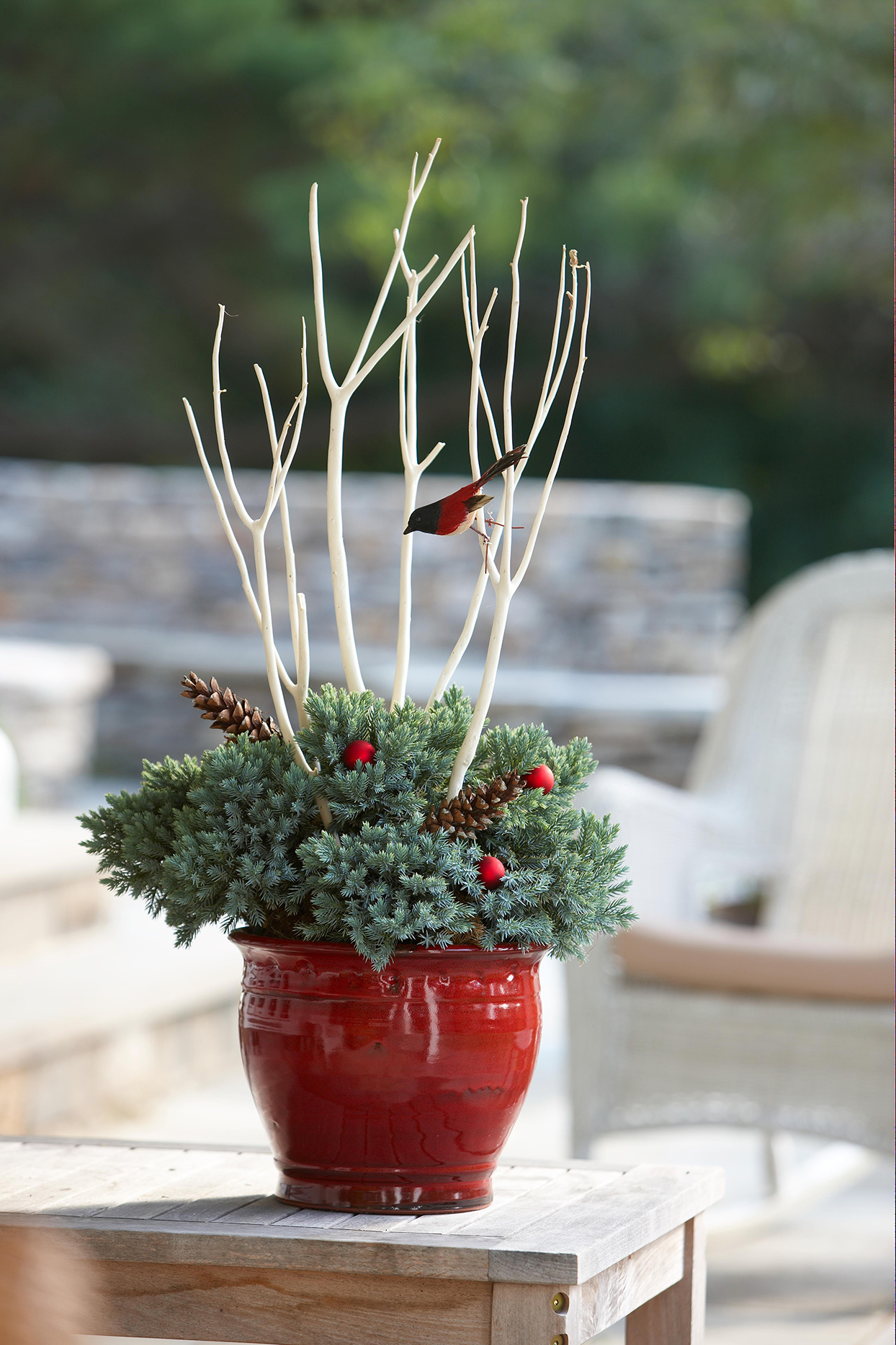red winter planter evergreens berries