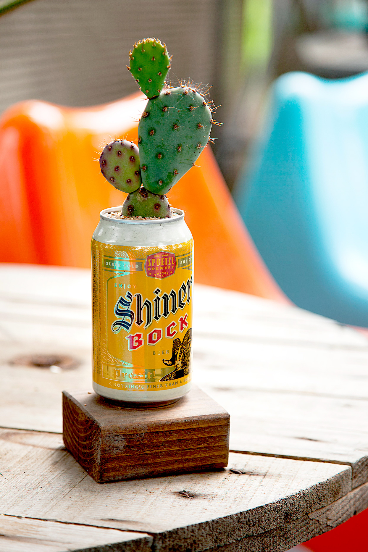 Beer Can Cactus Planter